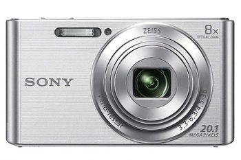 Compatta Sony DSC W830