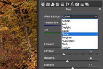 Cambiare bilanciamento bianco photoshop