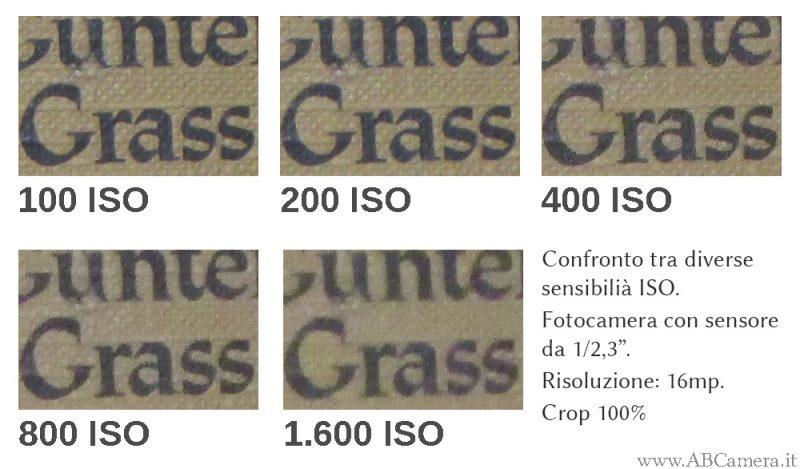 confronto tra sensibilità iso da 100 a 1600 con fotocamera economica