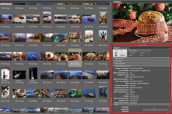 dati exif visti su adobe bridge