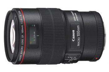 EF 100mm IS USM: forse il miglior obiettivo per Canon Full Frame adatto alla Macrofografia