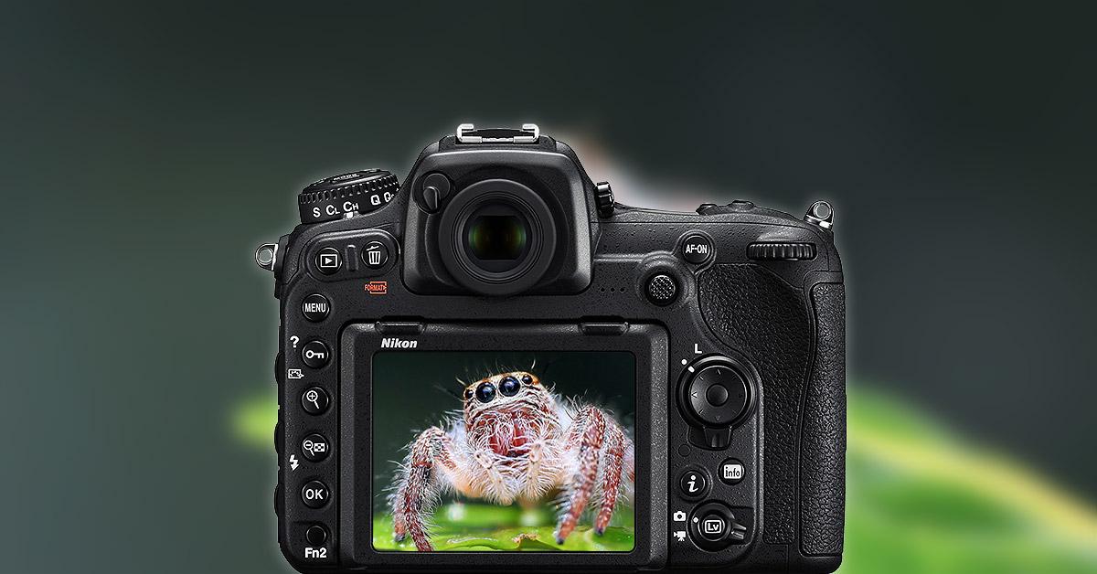 migliori obiettivi macro per Nikon